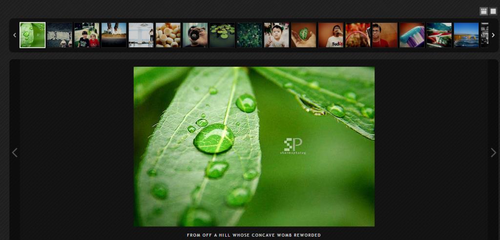 slide_galeria