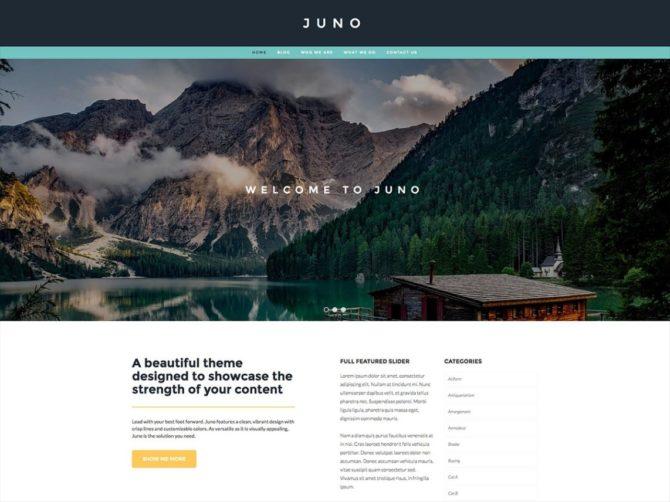 juno-template-webframe-e1548606530704